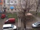 В Бельцах хлопьями повалил мокрый снег.