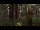 Поле битвы Доисторический мир Сражения динозавров Документальный фильм mp4