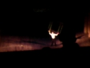 Луганский цирк приехал в Стаханов.