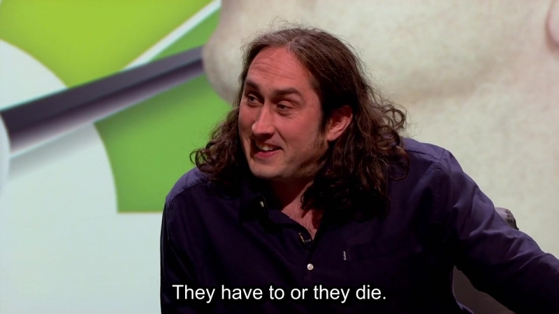 O Series Episode 5 Odorous and Odious XL eng sub Nish Kumar Ross Noble Sally Phillips