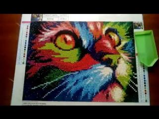 Алмазная мозаика «Радужный котик».Работа Евы Лукьяновой