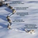 Анна Афонькина фото #46