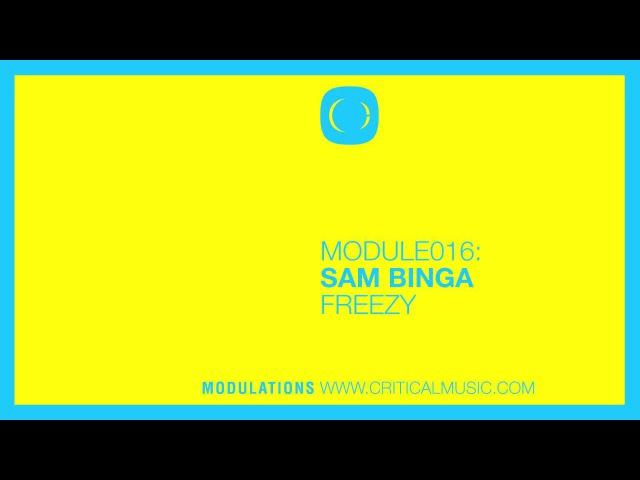 Sam Binga - Freezy [MODULE016]