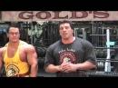 The Fit Show with Milos Sarcev Shoulders