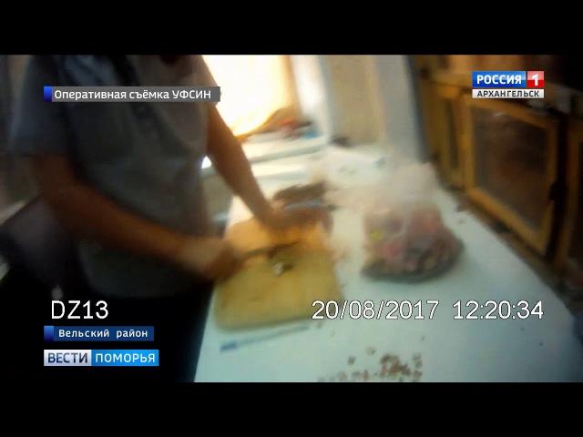 В Вельском районе мать одного из осуждённых пыталась передать в колонию 40 сим-ка...