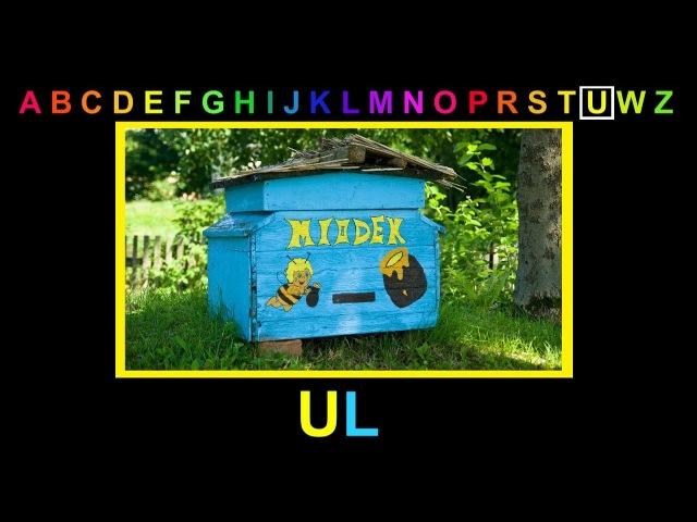 ALFABET - Litera U - abecadło dla dzieci po polsku. Bajka edukacyjna. Słowa na literę U. Urodziny