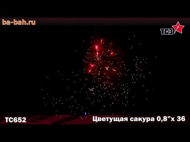 Фейерверк ТС652 Цветущая сакура (0,8 х 36)