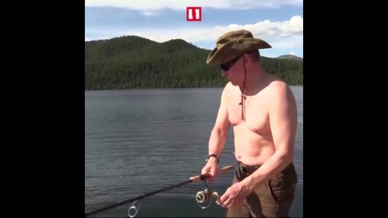 Putin - Dildo fishing coub