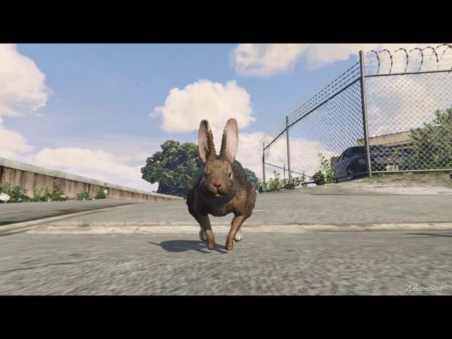 2-я лофофора (кролик) Играем за животных GTA 5