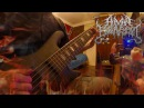 Human Enslavement -bass clip Symbiotic Neurogenesis