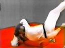 Hapkido 4 Dynamic Defensive Techniques