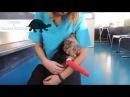 Хирургическое лечение перелома локтевой и лучевой кости у собаки породы йоркширский терьер
