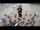 Кормим голубей. Прогулка около моря. Севастополь. Парк Победы. 12.02.18. Дождливый де...