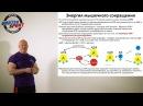 Энергия мышечных сокращений АТФ и скорость Лекция для спортсменов