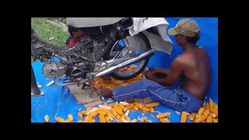 Pipil Jagung dengan Menggunakan Motor