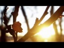 Потап и Настя Каменских - Чумачечая весна римейк клип