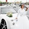 Аренда автомобиля на свадьбу СПб. Five Cars