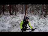 Прогулка по снежному лесу )