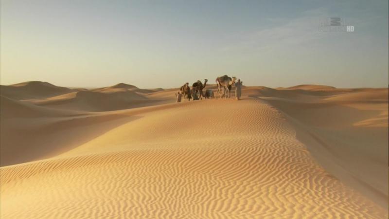 В дебрях Африки. 11 серия. Сахара - Жизнь на грани