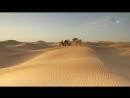 В дебрях Африки 11 серия Сахара Жизнь на грани