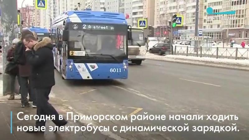 В Петербурге в Приморском районе запустили электробусы до Юбилейного квартала 12 02 2018