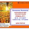 SCHOLA POLONICA курсы польского языка в Варшаве