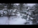 Масленица-2018, или