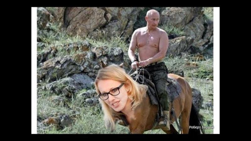Д Робот - Молодая лошадь. Песня об оппозиции путину на выборах путина в 2018 году