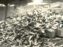 Битва на Сомме 1916 г.