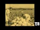 ТАЙГА 8 НАУКА История создания CGNC хвойная хлорофилло-каротиновая паста Ф. Т. Сол...