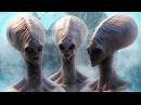 Контактёры с НЛО рассказали о требовании пришельцев Земляне идут по ложному пути Док фильм