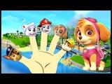 Щенячий патруль Paw Patrol Песня для детей Лопаем Воздушные Шарики