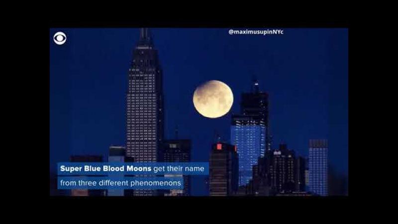 Супер голубую луну крови увидели в Нью Йорке и других местах мира
