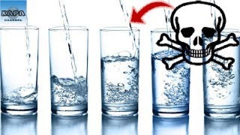 6 Thời Điểm Nên Tránh Uống Nước Nếu Không Muốn Tổn Hại Cho Sức Khỏe - KAPA Channel