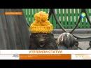 В Минске УТЕПЛИЛИ СТАТУИ Эфир от 23 11 17
