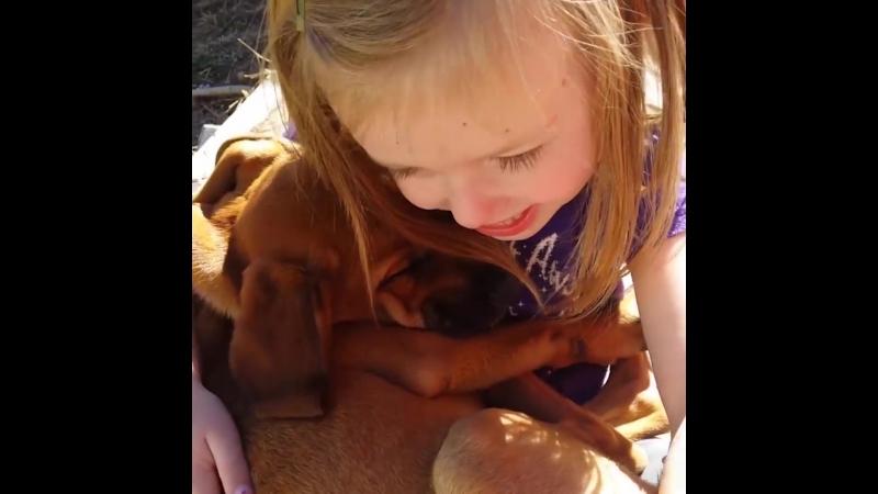 Девочка спела колыбельную собаке