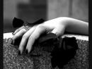 черная роза, эмблема печали...