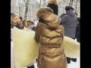 Бой подушками Всех с Масленицей 🌿🌻🌾
