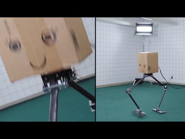 Freeky robots · coub, коуб
