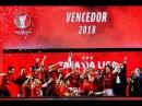Taça da Liga Futsal A festa do SL Benfica em Sines