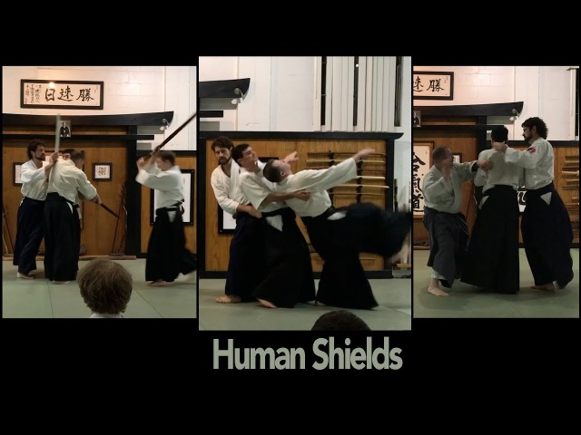 Multiple Attackers: Human Shields, Substitutions, Bridging, and Entangling