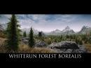 Skyrim SE Mods Whiterun Forest Borealis