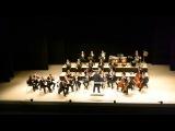 Венский филармонический оркестр  Иоганн Штраус-сын, Гром и молния, шуточная  ...