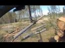 Сплошная валка леса под Фискар Урал лесовоз Красновишерск 2016