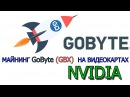 Майнинг GoByte (GBX) на Видеокартах NVIDIA
