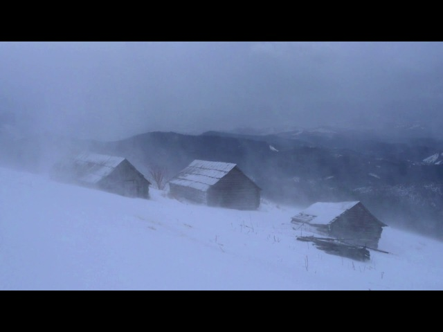 🎧 Winter Storm Ambience - Heavy Snowstorm Blizzard Howling Wind Sounds For Relaxation