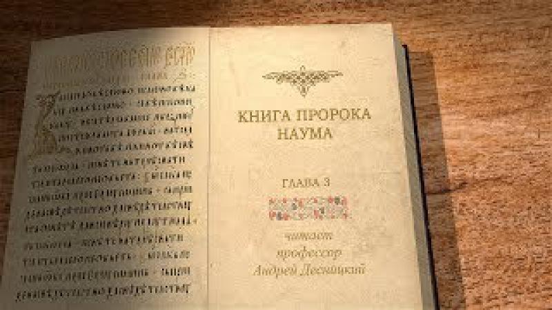 Пророк Наум, глава 3. Профессор Андрей Десницкий
