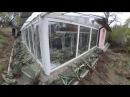 Шишаки - теплиця для суккулентних рослин, агави у відкритому грунті.