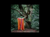 James Holden &amp The Animal Spirits - Each Moment Like The First