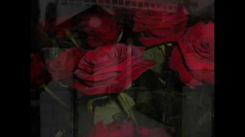 Bahai SongChristina Frith - Move Me [ into Your garden of Paradise ] ❤❤❤❤❤❤❤❤❤